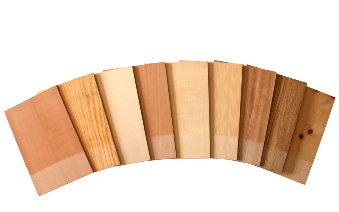Holz beeinflusst die Sinne